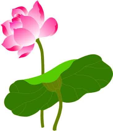 06 Vai cam nhan ve kinh Dieu Phap Lien Hoa 3
